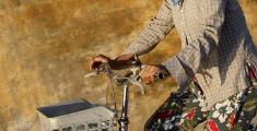 Vietnam begegnen: Abenteuer Alltag zwischen Nudelsuppe und Konfuzius