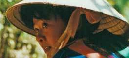 Vietnam - mon amour