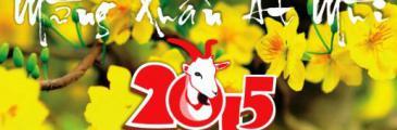 Tết Ất Mùi 2015 (aktualisiert)